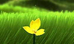 Flower logo vignette 30.05.2013.