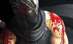 ninja gaiden vita