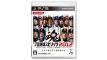 Pro Baseball Spirits 2012 covers yakyuu logo vignette 28.02 (2)