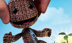 Vignette Head LittleBigPlanet PSVita jaquette